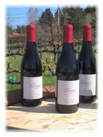 04/10/10 - Meet the Winemaker: Tony Craig (formerly with David Bruce) of Sonnet Wine Cellars @ Artisan Wine Depot