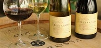 03/20/10 - Wine Enthusiast Top 100 Wines of 2008 - Boutique Testarossa Chardonnay & Pinot Noir Tasting